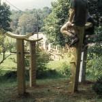RT Leverich Penland Perches 2003
